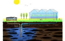 Subsurface water solutions for irrigation water supply prove to be cost effective